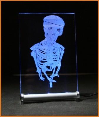 Skelett LED Leuchtschild