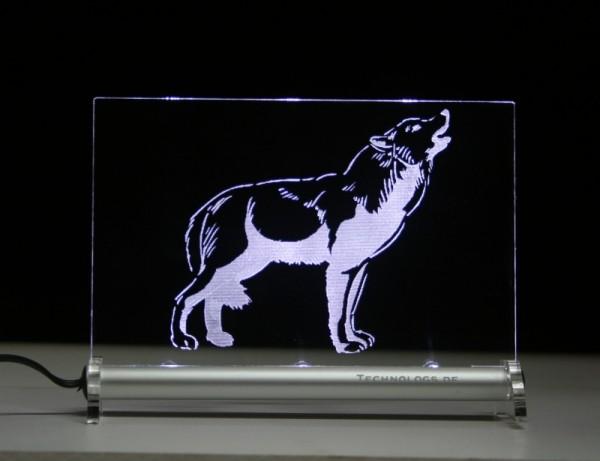 Polarwolf LED Leuchtschild