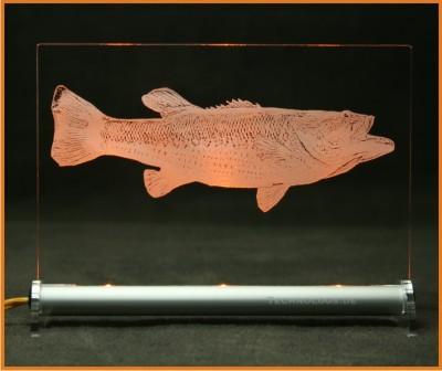 Forellenbarsch - Micropterus Salmoides LED Leuchtschild