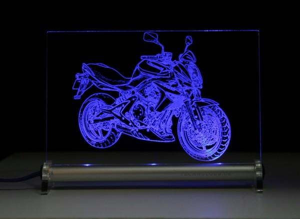 Kawasaki ER 6n LED Leuchtschild
